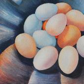 A Dozen Eggs, watercolor, ©Anna Dal Pino