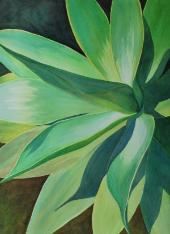 Agave in the Sun, watercolor, ©Anna Dal Pino