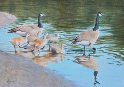 Family Outing, watercolor, ©Anna Dal Pino