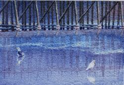 Seagulls at the Trestle, colored pencil & watercolor, ©Anna Dal Pino